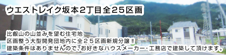 928-sales-02