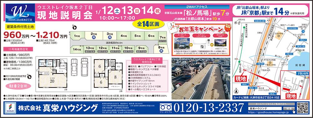 1/12(土)最新広告